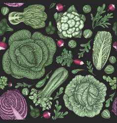 hand drawn vintage vegetables organic fresh food vector image