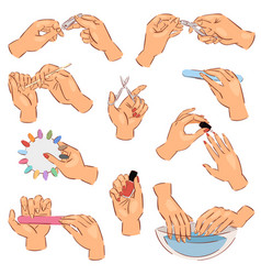 manicure manicured hands and manicuring vector image