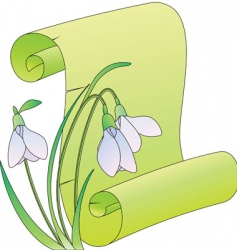 snowdrops scroll vector image