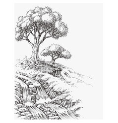 Waterfall and olive trees landscape hand drawing vector