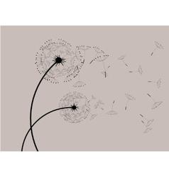 Dandelions in the wind vector