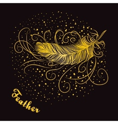 Decorative feather with curls on a dark background vector image vector image