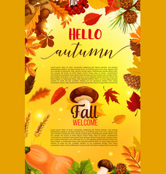 hello autumn banner design with fall nature frame vector image vector image