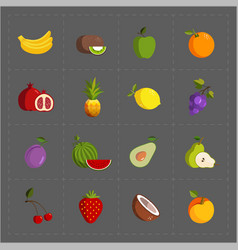 colorful fruit icon set on grey background vector image