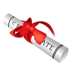 Certificate gift roll vector image