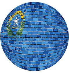 Ball with nevada flag vector