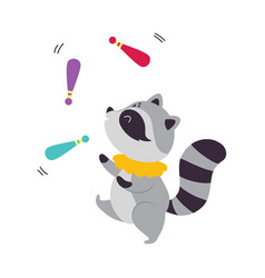Circus raccoon animal with striped tail juggling vector