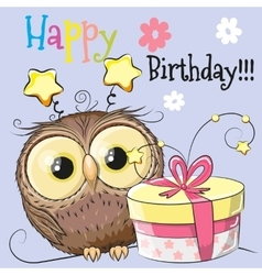 Owl with gift vector image