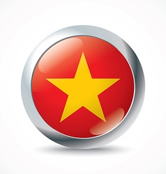 Vietnam flag button vector