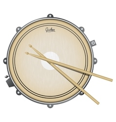 Snare drum realistic with vector