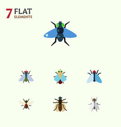 Flat icon housefly set of housefly mosquito dung vector