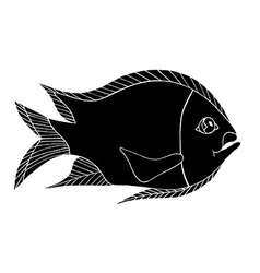 Hand drawn fresh fish vector image