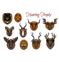 hunting sport trophy animal heads and antlers vector image