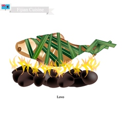 Lovo fijian meat cooked on heated stones vector