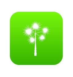 Palm chamaerops icon digital green vector