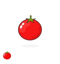 Tomato icon isolated flat cartoon tomatoe vector image