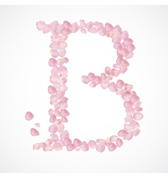 B letter Alphabet from pink petals of rose vector image vector image