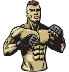 fighter pose vector image