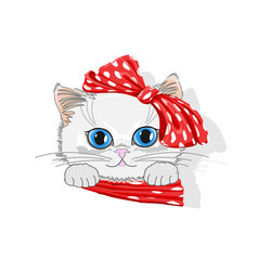 cat in hat with bow vector image