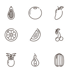 fresh nutrition harvest fruits icons set line vector image