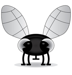 black and white of a baby fly vector image