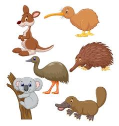 Australian animal cartoon vector image vector image