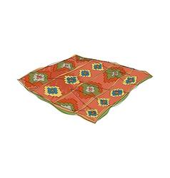A rag rug on the floor vector image