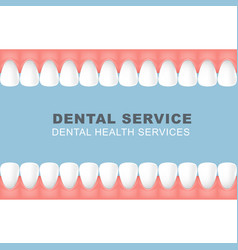 Dental poster with frame of row of teeth vector