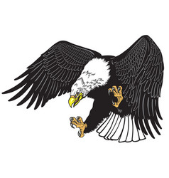 Eagle in the fly tattoo vector