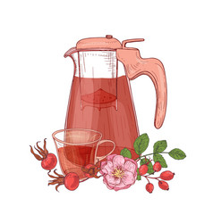 elegant drawing of glass transparent pitcher with vector image