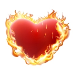 Heart in flame isolated on white EPS 10 vector