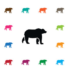 Isolated grizzly icon wild element can be vector