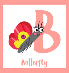 Letter b vocabulary colorful butterfly vector