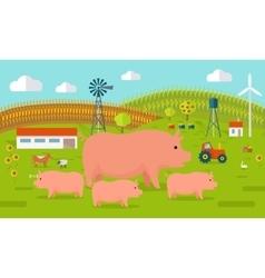 Pigs on farmyard concept vector