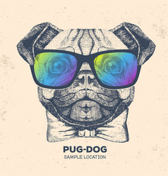 Retro hipster animal pug-dog hand drawing muzzle vector