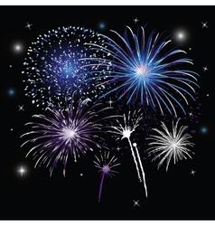 Sylvester fireworks vector