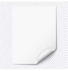 white empty paper sheet with curled corner vector image