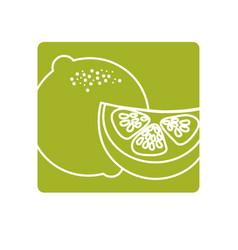 Label fresh lemon with slice organ fruit food vector