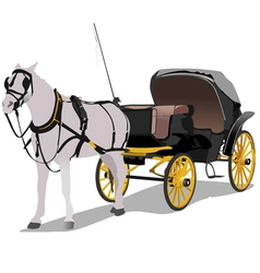 6228 horse vector image