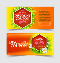 red discount coupon vector image vector image