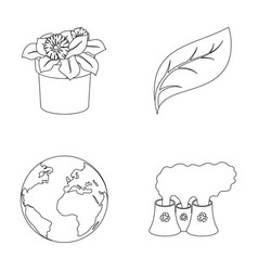 A processing plant flowers in a pot a green leaf vector