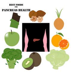 Best foods for pancreas health vector