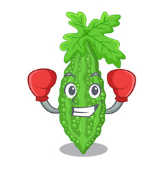 Boxing bitter melon isolated on a mascot vector