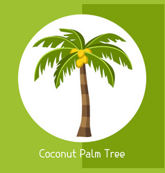 Coconut palm tree of exotic tropical vector