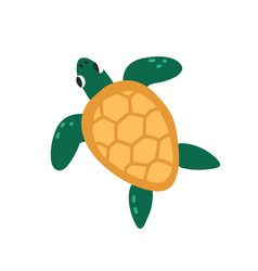 Cute green turtle with shell isolated on white vector