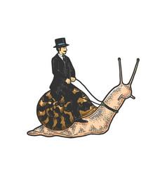 gentleman riding snail sketch vector image