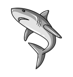 Great white shark icon in monochrome style vector image
