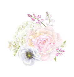 peony anemone composition vector image