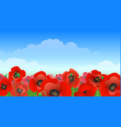 poppy field landscape vector image