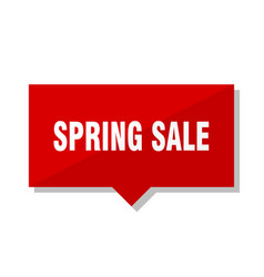 spring sale red tag vector image